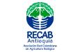 Asociación Red Colombiana de Agricultura Biológica (Recab)