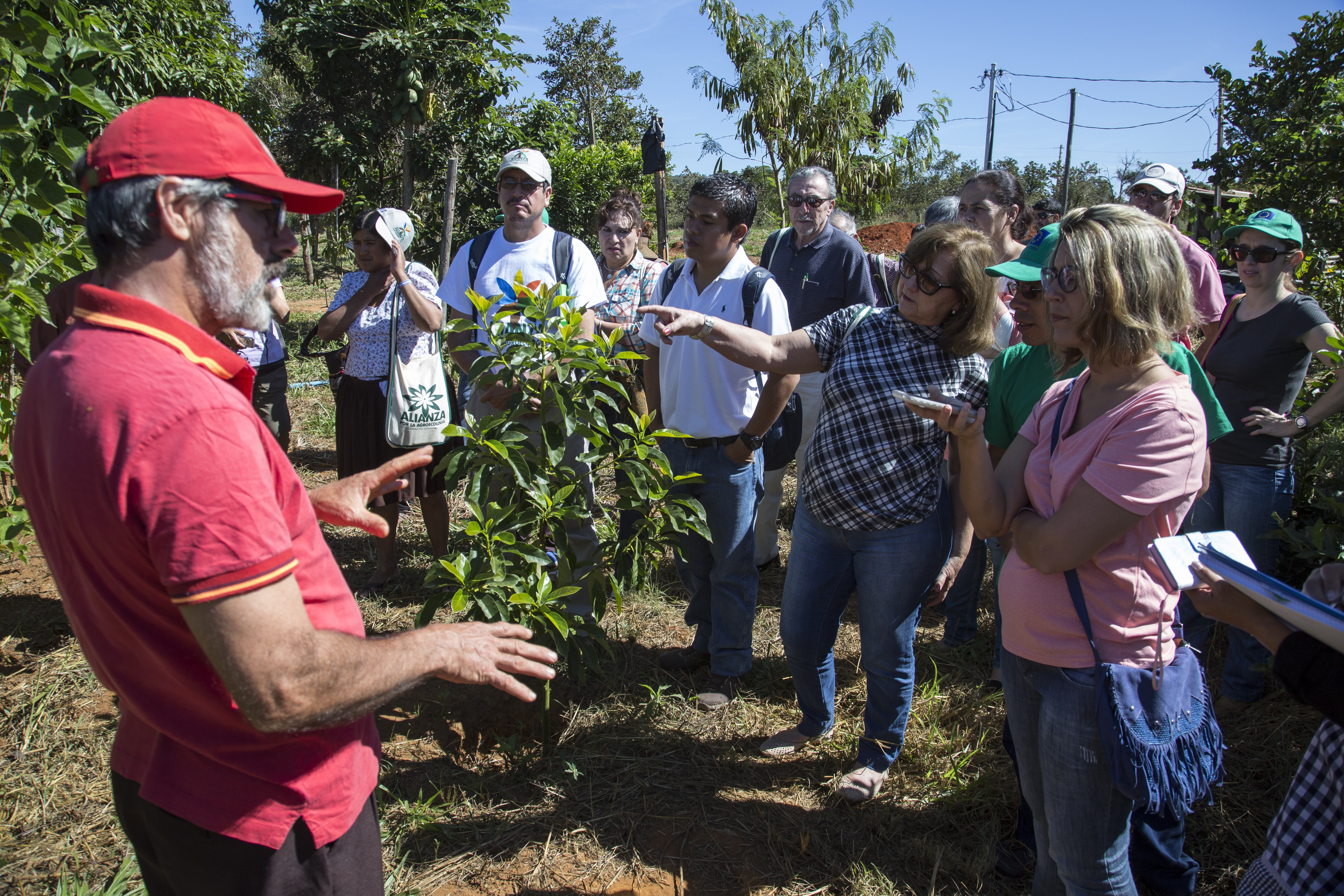 Seminario Internacional Alianza por la Agroecologia. Brasilia Maio de 2017. Visita ao Assentamento Pequeno Wiloian em Planaltina/DF. Foto de Ubirajara Machado